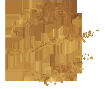 Démarche Artistique Delphine DESSEIN
