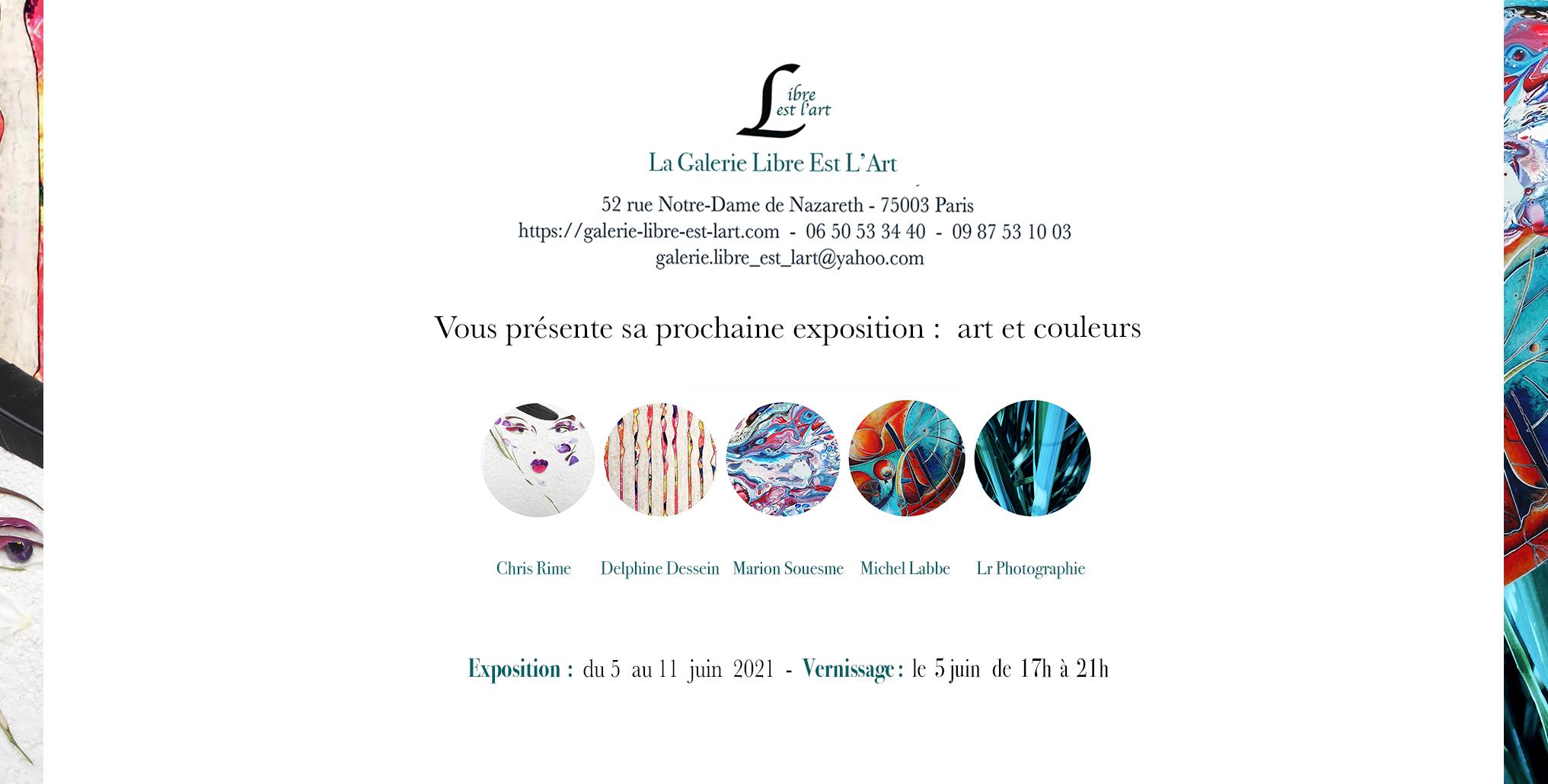 art exhibit to Paris by Delphine DESSEIN gallery Libre est l'art